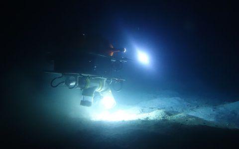 Exploration de nuit © Laurent Charles / MNHN / CNRS / Univ Montpellier
