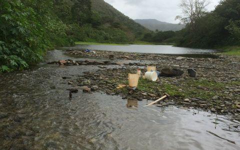 Site d'échantillonnage type, rivière la Hienghène
