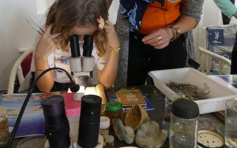 Partager les découvertes avec les jeunes de l'Île des Pins