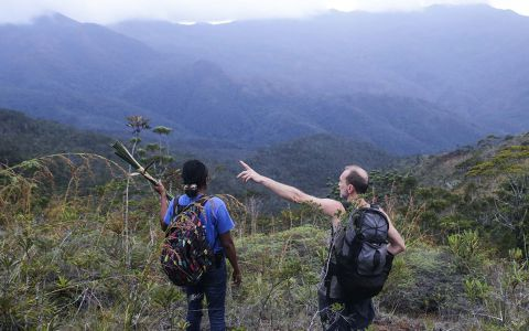 Pour cette mission, cinq kilomètres de sentier ont été ouverts, passant des forêts denses aux crêtes ouvertes, comme ici