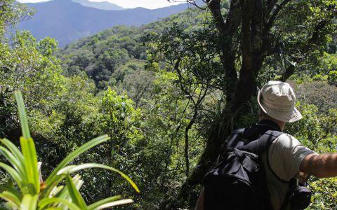 Le sentier tracé pour l'expédition offre quelques beaux points de vue à travers le feuillage