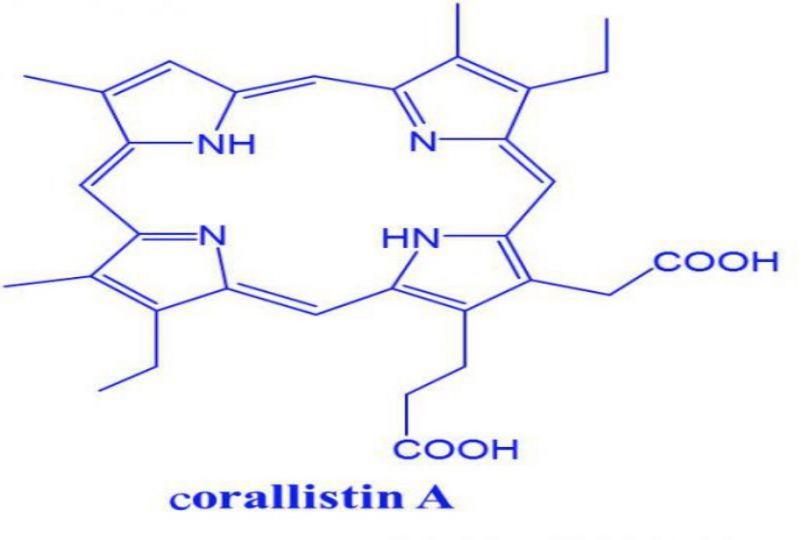 Molécule de corallistine A © IRD
