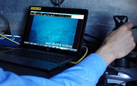 Flipper joystick © Laurent Charles / MNHN / CNRS / Univ Montpellier