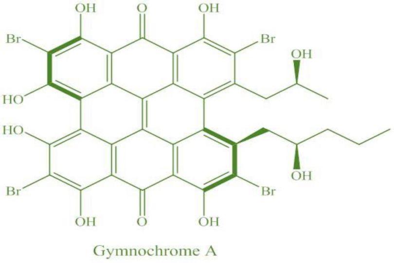 Molécule de gymnochrome A © IRD