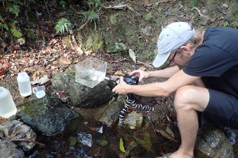 Vue du studio photo mobile, pour photographier les crevettes directement sur place © MNHN