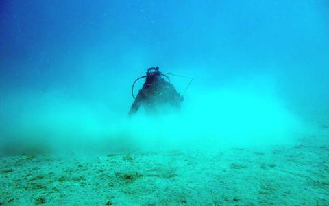 Collecte en plongée à Koumac © Laurent Charles / MNHN